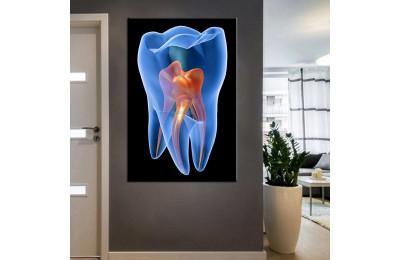 Ağız ve Diş Sağlığı Polikliniği Tabloları dsc-01