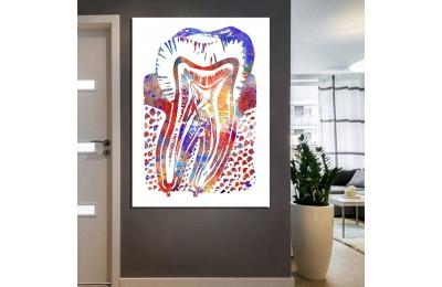 Ağız ve Diş Sağlığı Polikliniği Tabloları dsc-22