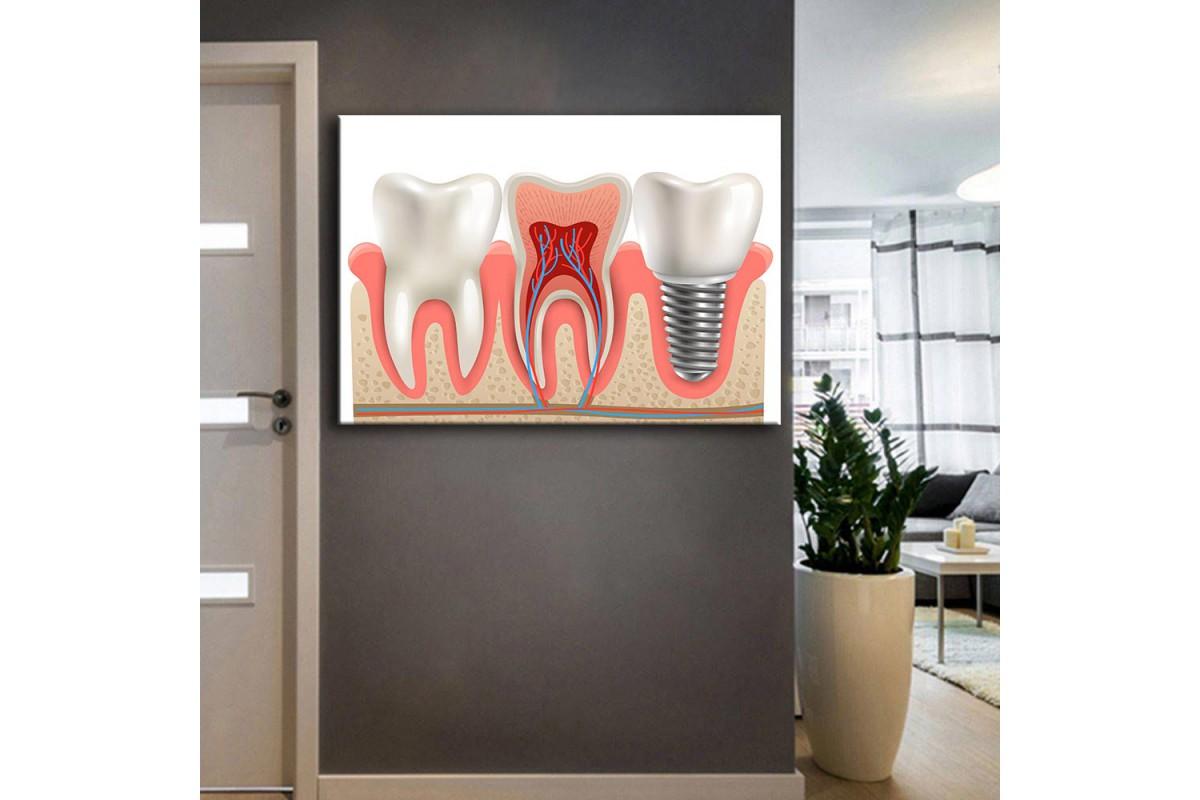 Ağız ve Diş Sağlığı Polikliniği Tabloları dsc-27