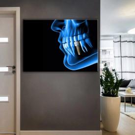 Ağız ve Diş Sağlığı Polikliniği Tabloları dsc-28