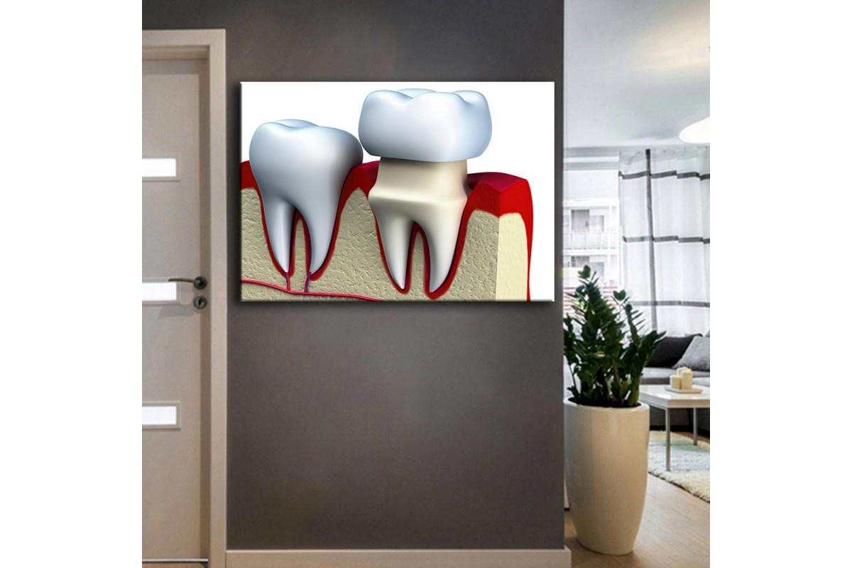 Ağız ve Diş Sağlığı Polikliniği Tabloları dsc-39