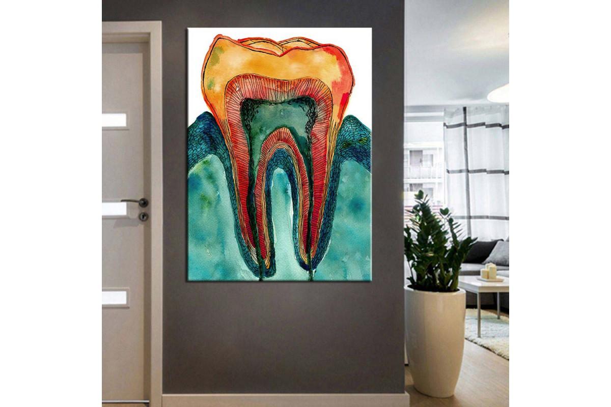 Ağız ve Diş Sağlığı Polikliniği Tabloları dsc-45