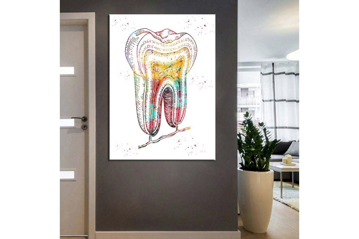 Ağız ve Diş Sağlığı Polikliniği Tabloları dsc-77