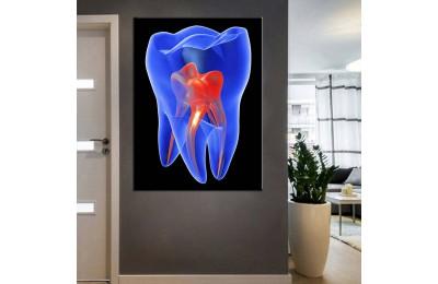 Ağız ve Diş Sağlığı Polikliniği Tabloları dsc-81