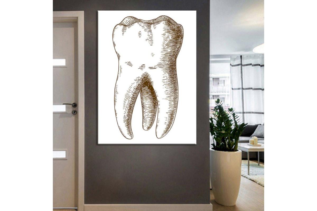 Ağız ve Diş Sağlığı Polikliniği Tabloları dsc-93