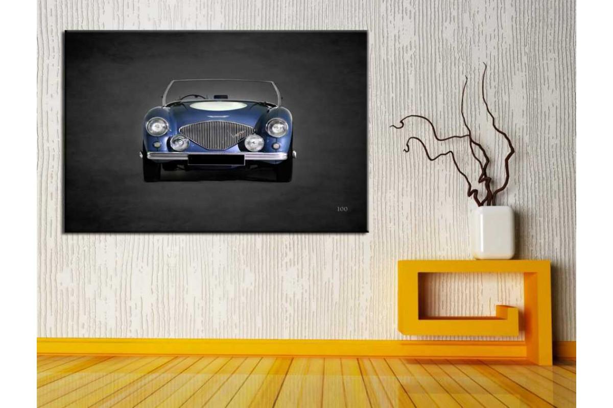 Arabalar ve Oto Galerisi Tabloları glr-206