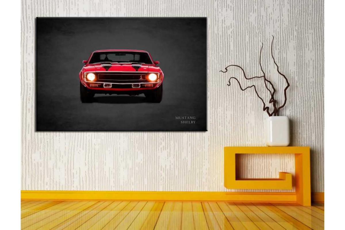 Arabalar ve Oto Galerisi Tabloları glr-242