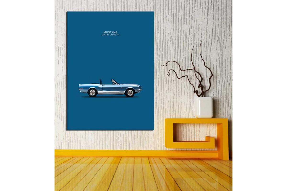 Arabalar ve Oto Galerisi Tabloları glr-28