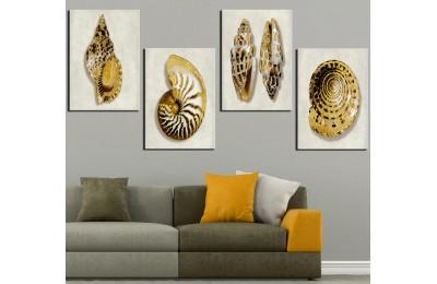 Deniz Kabukluları Beyaz Altın Kanvas Tablo dkm-k47-23-24-25-26