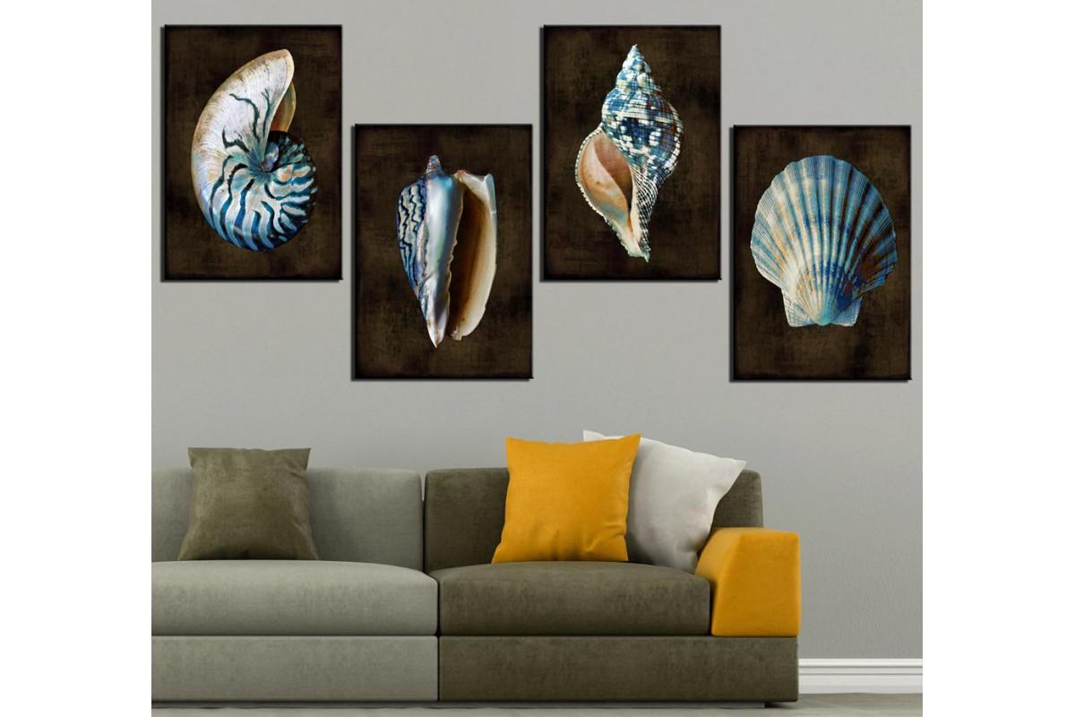 Deniz Kabukluları Kahverengi Kanvas Tablo dkm-k47-9-10-11-12