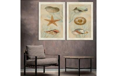 Deniz Yıldızı Deniz Kabukluları Sarı Pastel Tonlar 2 Parça Kanvas Tablo dkm-k50-12