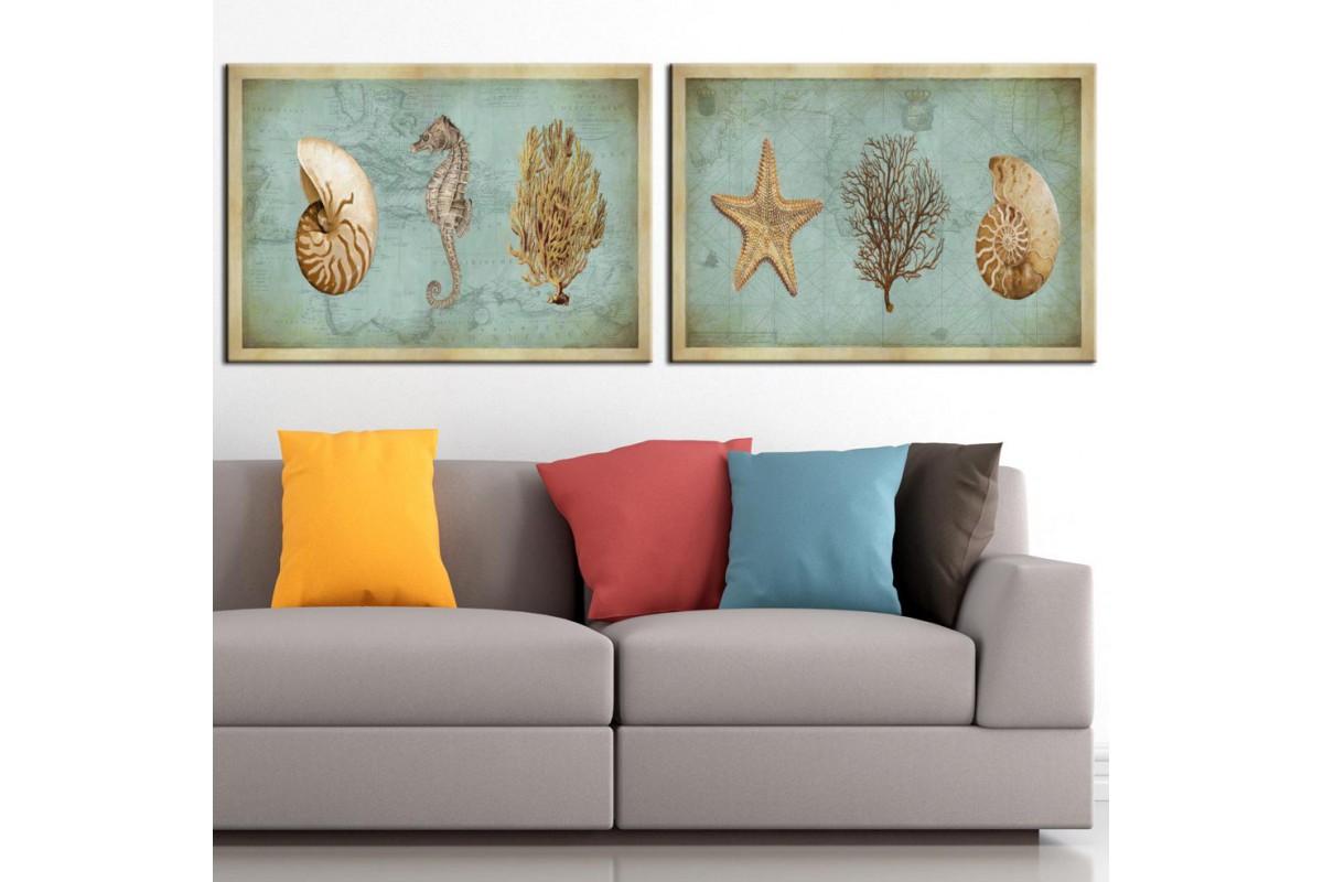 Deniz Yıldızı Deniz Kabukluları Mavi Pastel Tonlar 2 Parça Kanvas Tablo dkm-k50-34