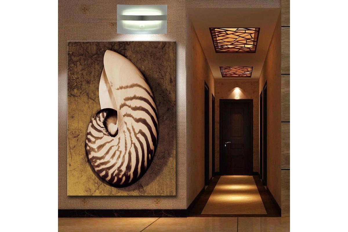 dkm-k62-11 Deniz Kabuğu Yağlı Boya Görünüm Tablo