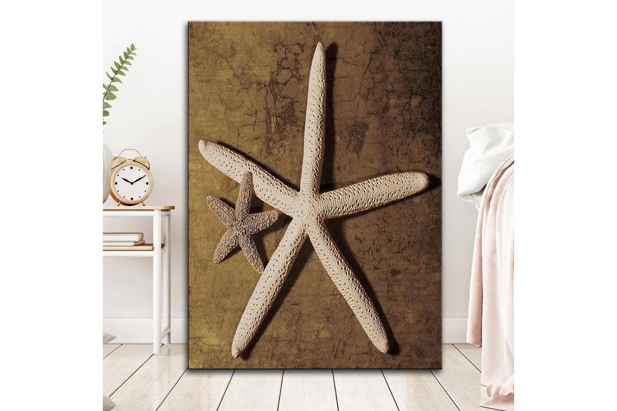 dkm-k62-12 Deniz Yıldızı Yağlı Boya Görünüm Tablo