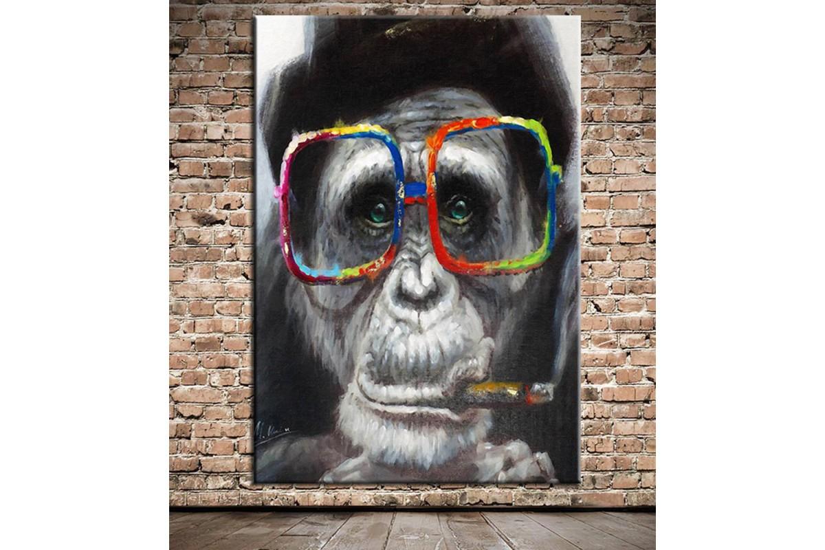 Gözlüklü Maymun Kanvas Tablo dkm-k63-1