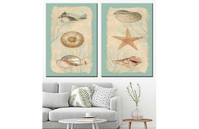 Deniz Kabukluları Yağlı Boya Görünüm 2 Parça Kanvas Tablo dkm-k71-22-23