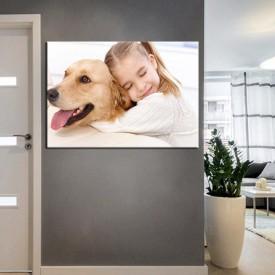 Pet Center Dekorasyon Veteriner Kliniği Tabloları kns-54