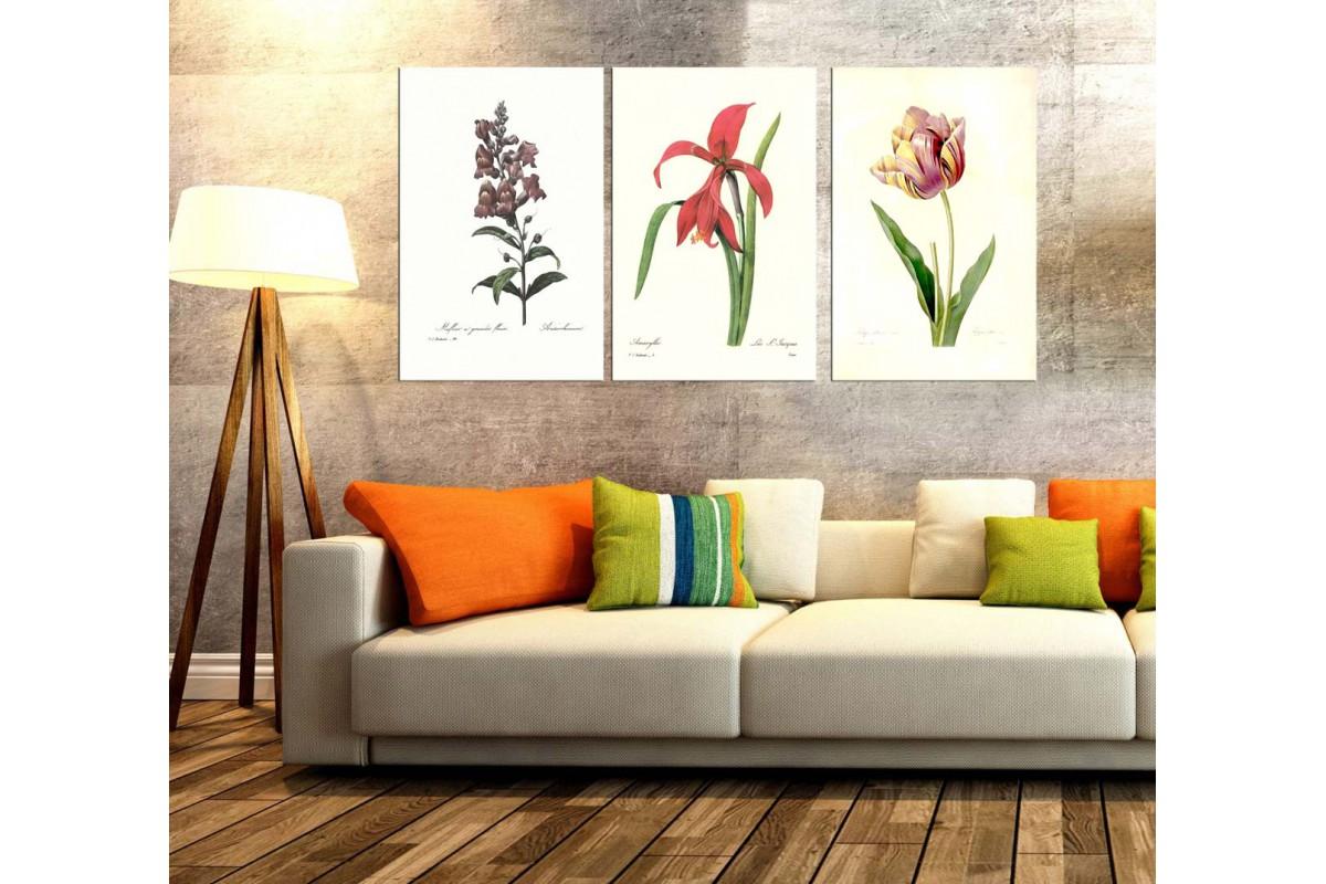 Çiçekler Retro Konsept Üçlü Kanvas Tablo dkm373839