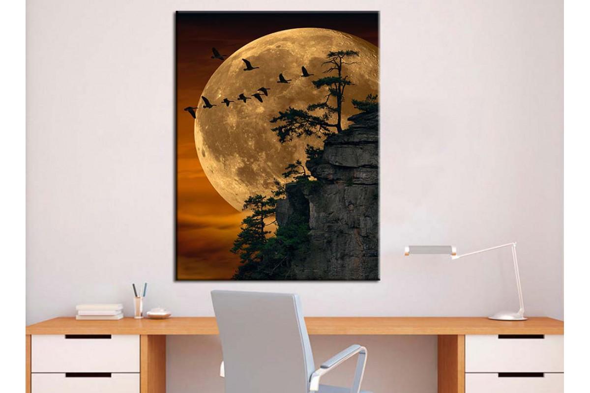Ay ve Gece Dekoratif Tablolar dkmr240