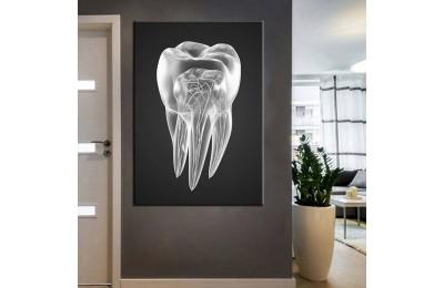 Ağız ve Diş Sağlığı Polikliniği Tabloları dsc-84