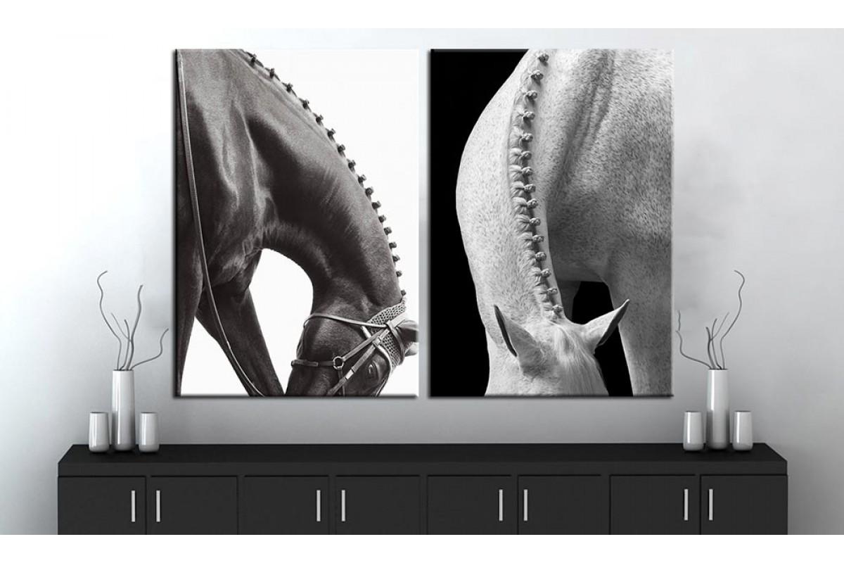 Atlar Siyah ve Beyaz 2 Parça Kanvas Tablo dsk-k1-30-31